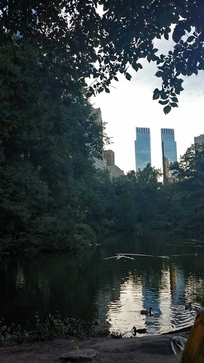 13 Central Park, late Sept