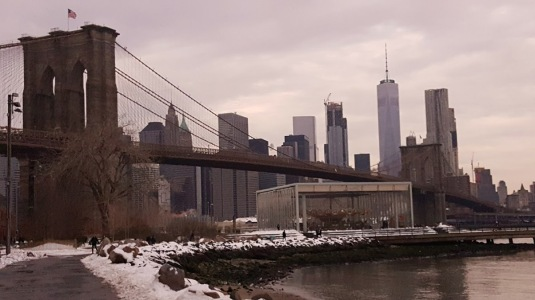 Brooklyn Bridge Park with Manhattan Skyline