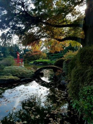 Botanic Garden Fall Colors