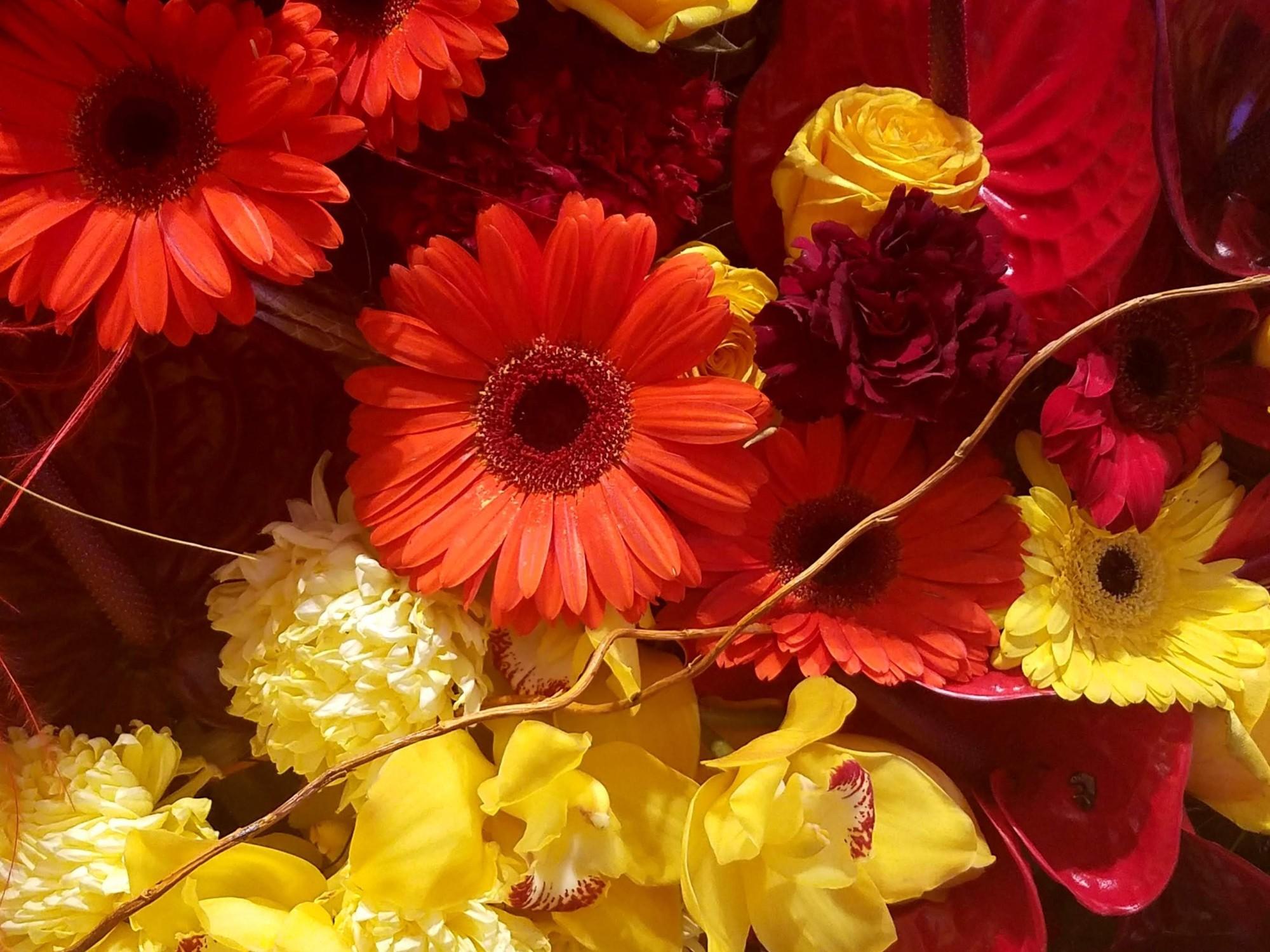 red and yellow flowers, assortment, arrangemment, art, photography, lensmomentns