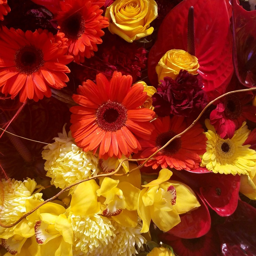 red and yellow flowers, assortment, arrangemment, art, photography, lensmomentns