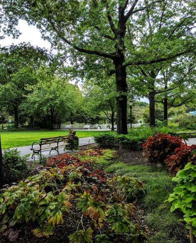 The damo garden
