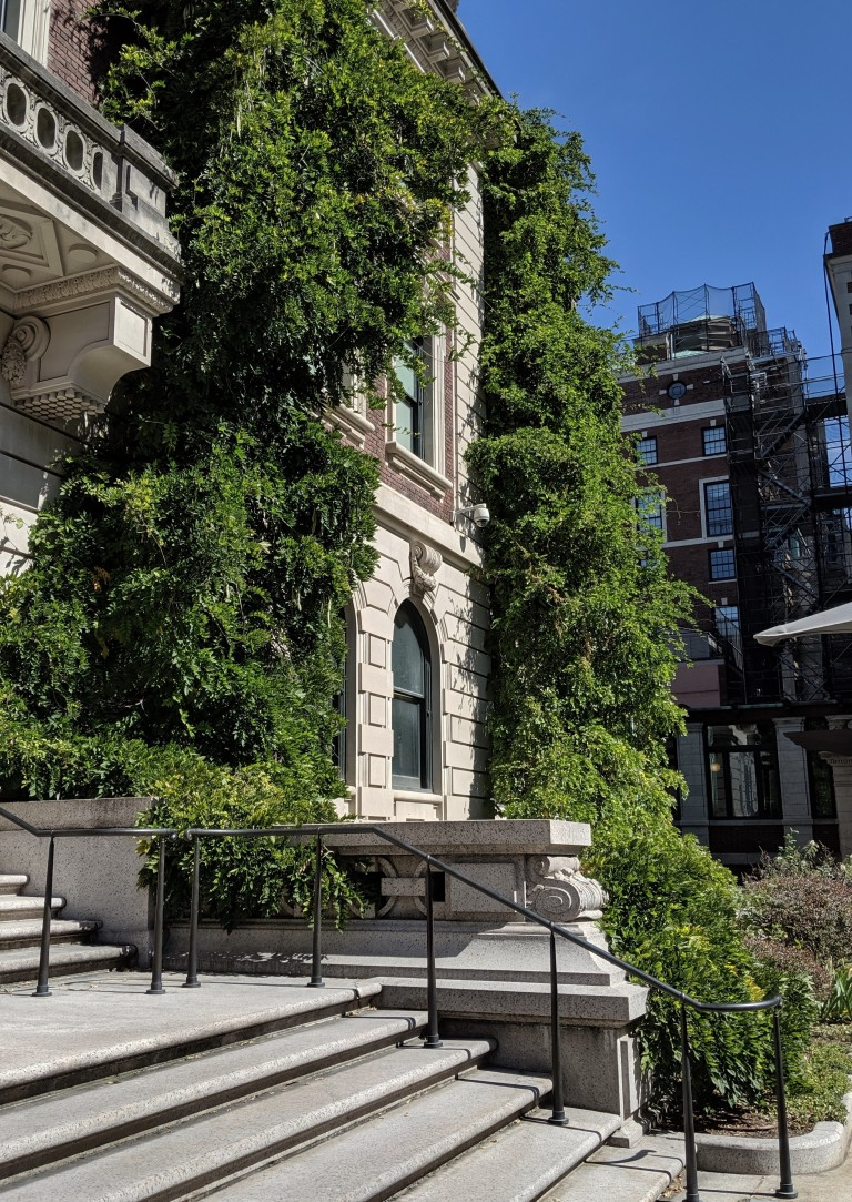 Cooper Hewitt Facade Section with late summer vines photo by LensMomentsNS 2019