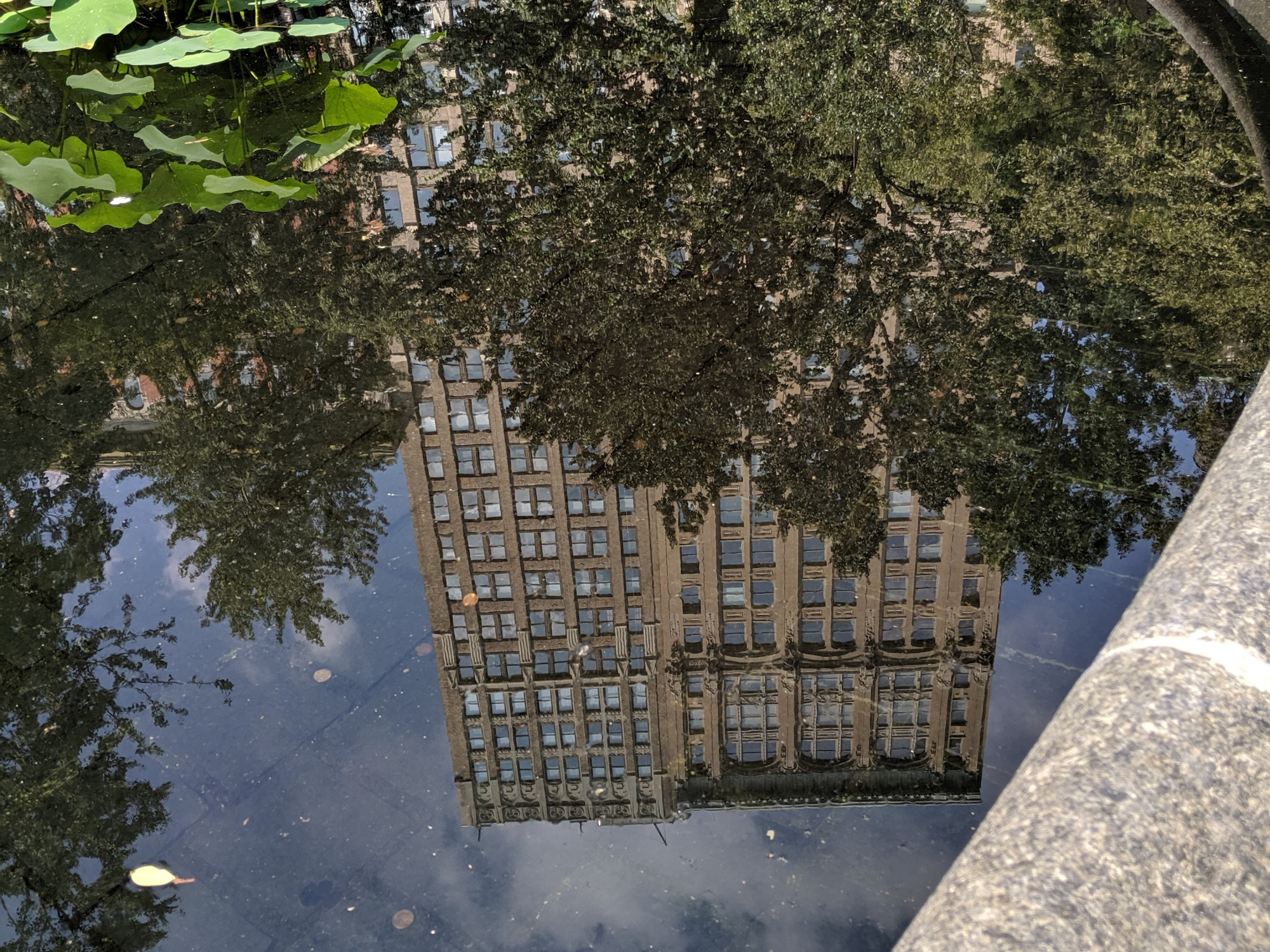 reflected image of historic buildings on 26th street in Manhattan, photo by LensMomentsNS
