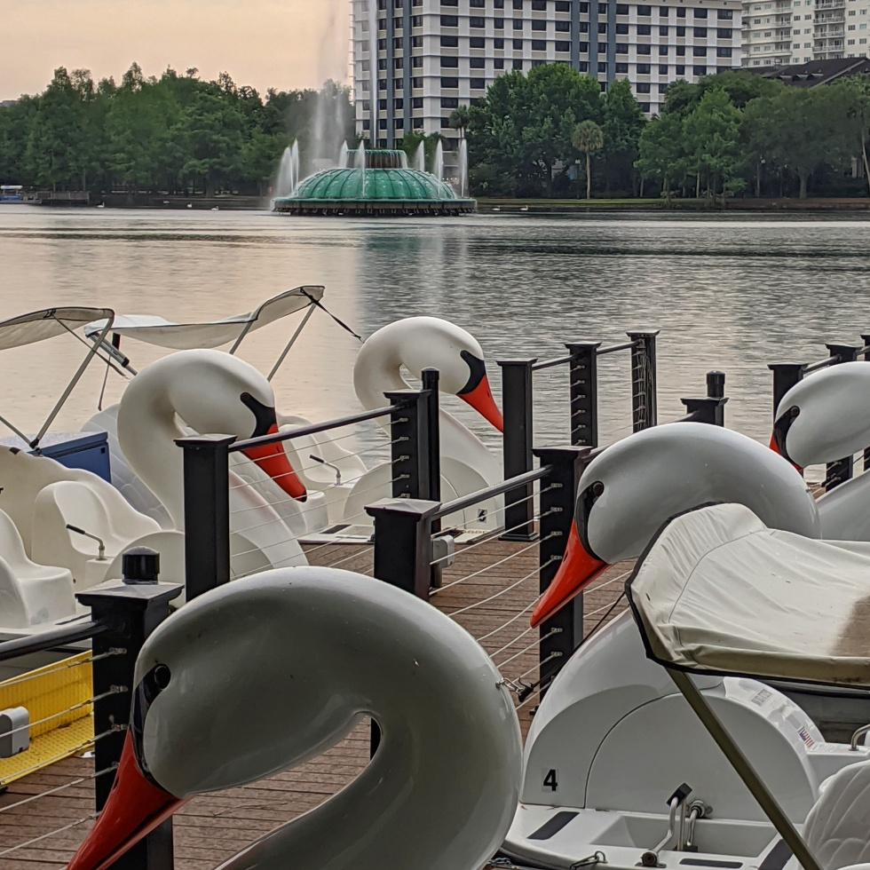 a photo of swan paddle boats docked on lake eola, orlando, florida, by LensMoments - Nichole Spates 2020