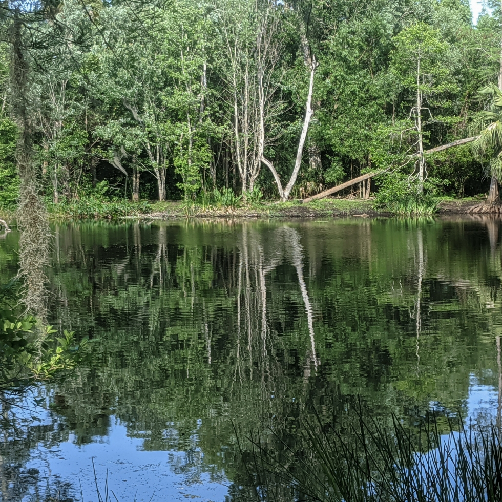 photo of a small lake with rippled reflection by LensMoments - Nichole Spates(c) 2020