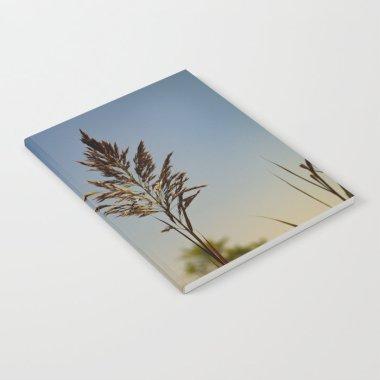 marsh-grass-against-a-blue-sky-notebooks