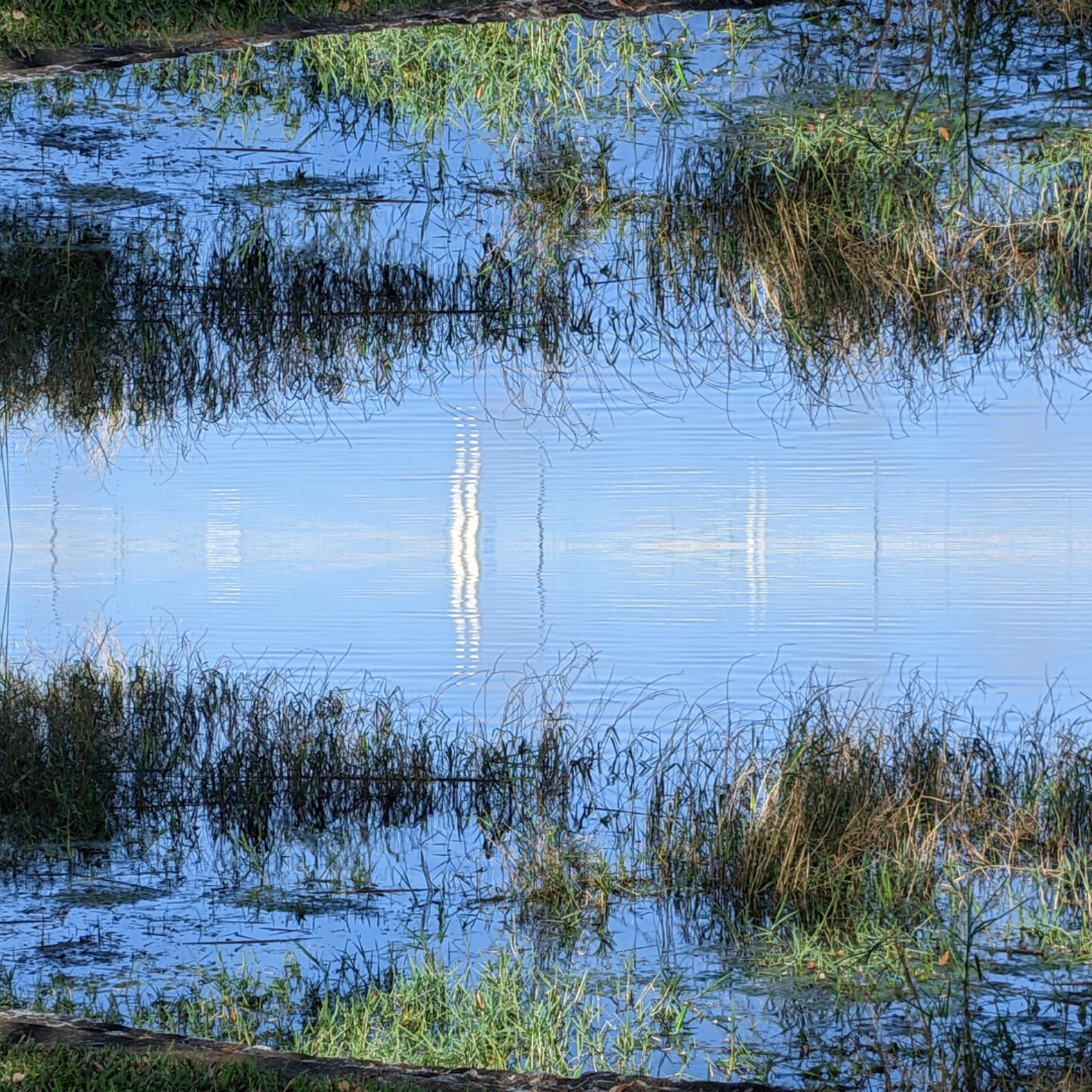 Mirror Lake Effect